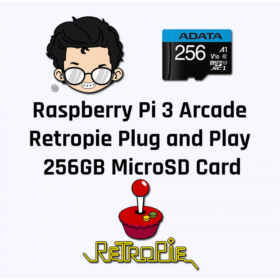 Raspberry Pi Arcade Model 3B 256GB MicroSD Card